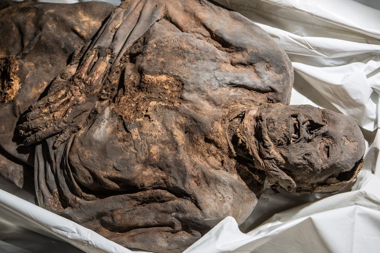 One of the mummies found within the crypt, not examined in this study.